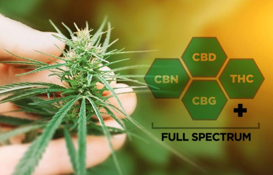 full spectrum cbd