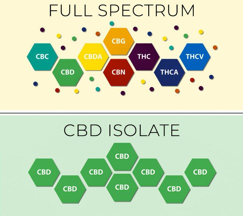 full spectrum vs cbd isolate