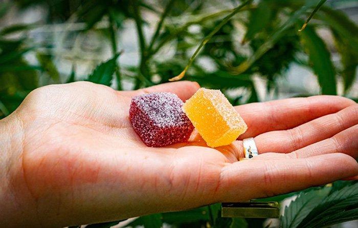 hemp gummies vs cbd gummiess